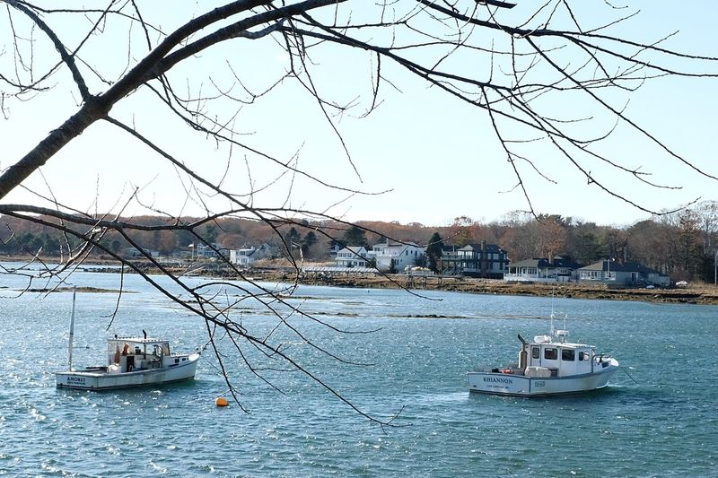 Nautical Vessel Transportation Sky Mode Of Transport Nature Day Outdoors Water Tree Bare Tree Winter Sailboat Branch Clear Sky Sailing No People Beauty In Nature Astrology Sign Sailing Ship Yachting Kennebunkport Kennebunk Kennebunk Maine Travel Harbor EyeEmNewHere