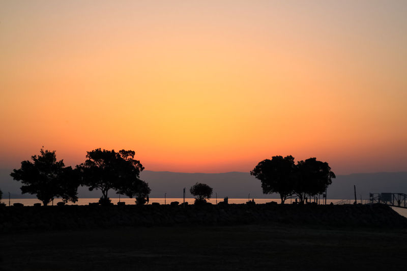 Stunning sunrise with silhouette of trees and tourists at Sea of Galilee in Israel Sea Of Galilee Tiberias Israel Golan Heights Water Middle East Tourism Travel Destinations Travel Visiting Mountain Sunrise Explore Discovery Sunset Sky Beauty In Nature Silhouette Scenics - Nature Orange Color Tree Tranquil Scene Tranquility Plant Nature Copy Space Environment Landscape Land Idyllic Non-urban Scene Clear Sky Field Outdoors No People