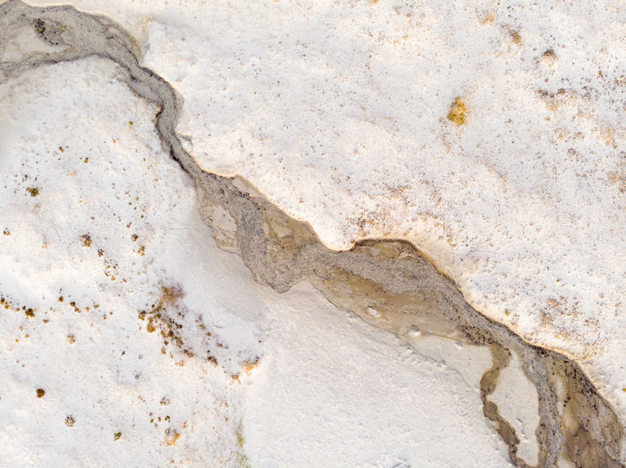 Close-up of white rock
