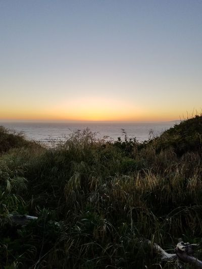 Sunset Horizon Over Water Tranquility Sky Scenics Nature Grass Landscape Outdoors Beauty In Nature No People Tranquil Scene City Life San Francisco Springtime Pacific Ocean Evening Glow
