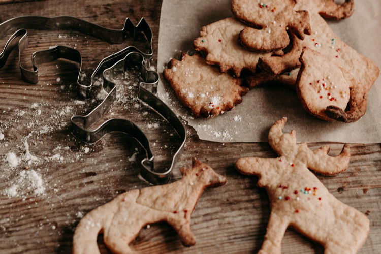 Diy christmas cookies. hot chocolate with cream and biscuits. animal figurine cookies.