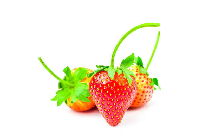 Strawberry (Fragaria x ananassa Duchesne) are fresh red fruit. rich in vitamins have a taste sour and sweet on isolated white background and clipping path Strawberry Isolated Food And Drink White Background Fruit Healthy Eating Freshness Organic Closeup Raw Food Ripe Juicy Berry Diet Delicious Tasty Clipping Path Strawberries Agriculture Fragaria X Ananassa Duchesne Ex Weston Studio Shot Food Berry Fruit Red
