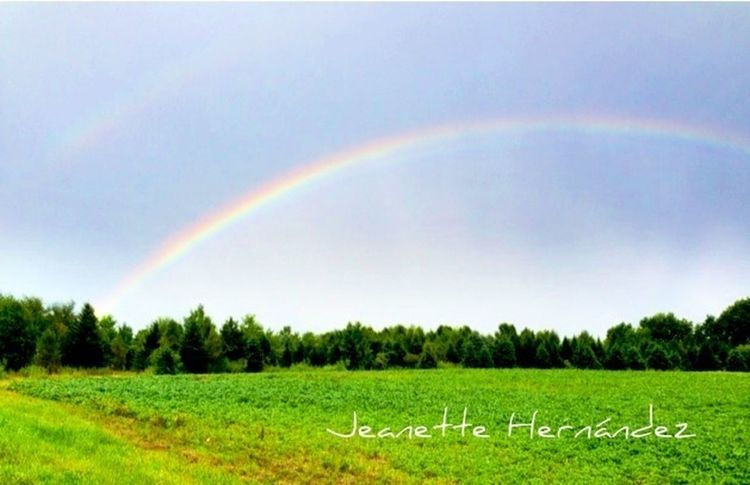 After the rain Rainbow Storm StreamzooPics Streamzoofamily