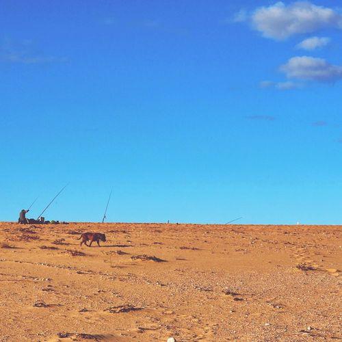 Tuross Heads Blue Clear Sky Landscape Outdoors Australia Beachphotography Beach