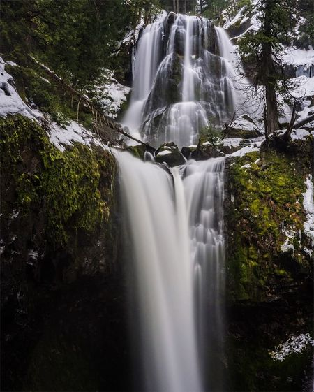 Vacations Adventure Spring Winter Hikingadventures Hiking Waterfall Flowing Water Water Motion Long Exposure Beauty In Nature Nature Scenics Forest Tree