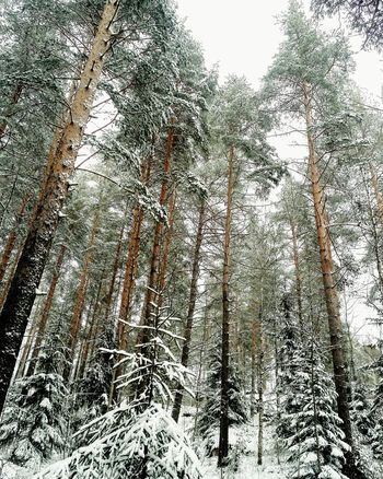 Hello World Day Life Heinola Photo♡ Photography Finland♥ Photos Photo Photograph No People Photo Of The Day