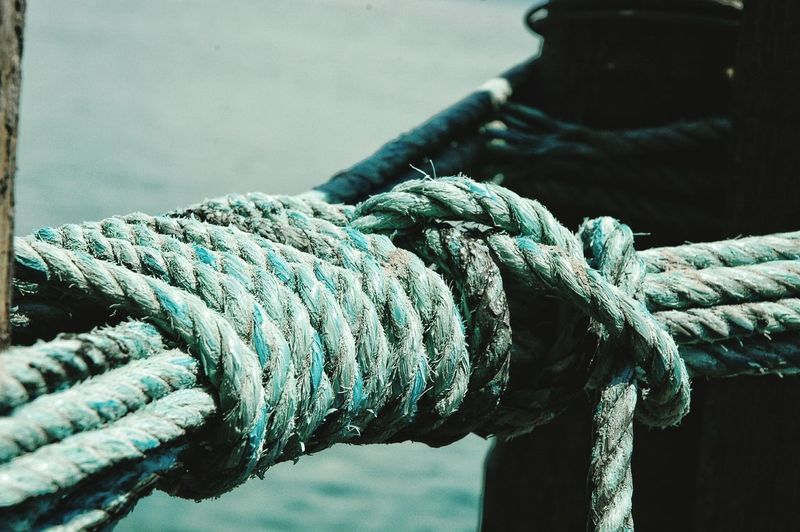 Close-up of blue ropes