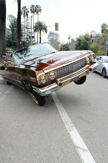lowrider Los Angeles CA Classic Style Lowridershow Streetwise Elysian