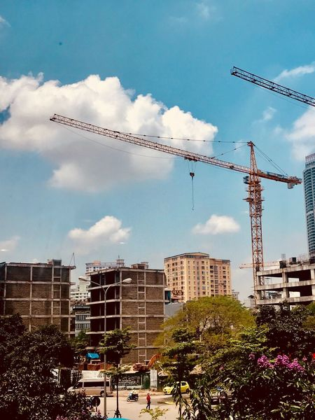 Contruction Sky Built Structure Building Exterior Architecture Cloud - Sky Nature City Building Plant Animal Themes Low Angle View No People Day Large Group Of Animals Bird Vertebrate Group Of Animals Tree Flying Office Building Exterior