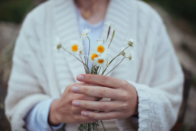 Flower Flower Head Fragility Freshness Holding Human Hand Nature