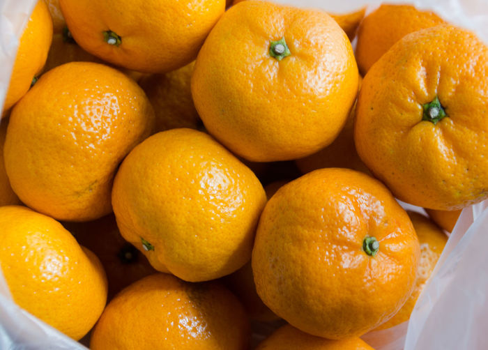 Oranges in White Plastic Bag Citrus Fruit Close-up Food Food And Drink Freshness Fruit Healthy Eating No People Orange Orange - Fruit Orange Color