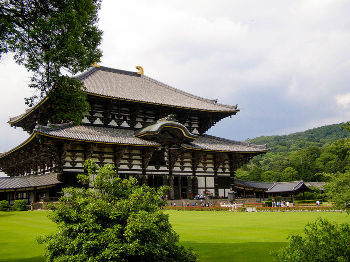 Todaiji temple by grassy field against sky