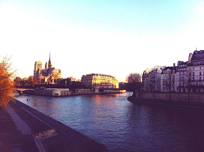 Goodmorning Paris <3 Paris ❤ Sunrise Notre-Dame Seine Hometown