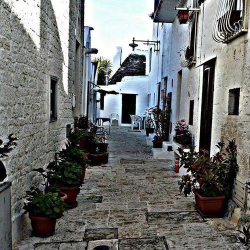 Trulli Alberobello Vía Paesaggio Fiori Piante Borgoantico Unesco Patrimoniodellumanita 'Instaitalia Igersitalia Puglia