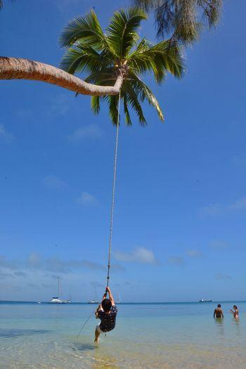 Rear view of man swinging on rope on seashore