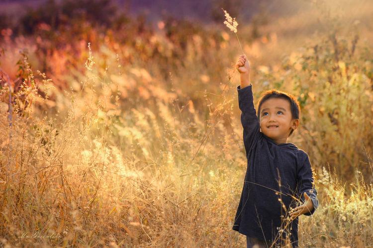 Cute boy standing amidst plants on field