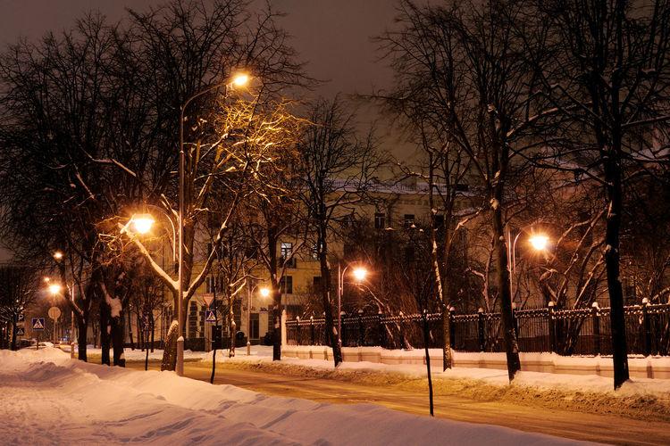 Quiet Street Street Night City Evening Trees Winter Snow Road Outdoors Europe Minsk Street Light Eastern Europe Belarus No People BY112_MINSK_AK BY112_BELARUS_AK