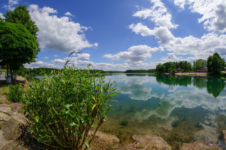 Niedernberg Beauty In Nature Blue Calm Cloud Cloud - Sky Cloudy Day Growth Idyllic Lake Lakeshore Landscape Nature No People Non-urban Scene Outdoors Plant Reflection Scenics Sky Standing Water Tranquil Scene Tranquility Tree Water