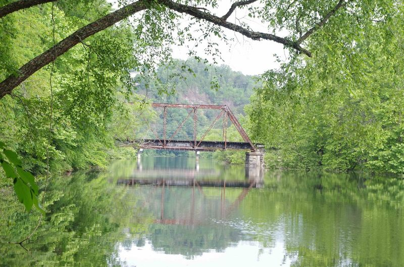 Architecture Beauty In Nature Bridge - Man Made Structure Built Structure Day Forest Green Color Growth Lake Nature No People Outdoors Reflection Sky Tranquility Transportation Tree Water Waterfront