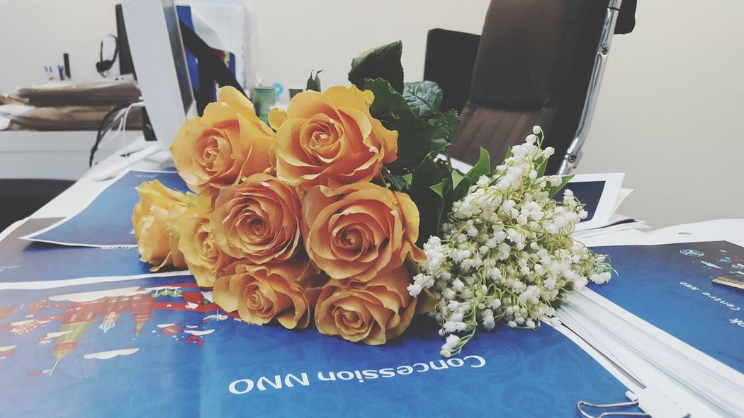 EyeEm Selects Flower Bouquet Flower Head Gift Celebration Rose - Flower Table Birthday Close-up
