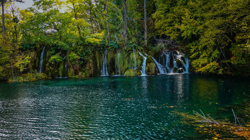 One of the lakes in Plitvice Lakes National Park Green Lakeview Nature Nature Photography Plitvice Lakes National Park Tree Trees Beauty In Nature Flowing Forest Greenery Lake Lake View Lakeshore Lakeside No People Non-urban Scene Outdoors Plitvice Plitvice National Park Tranquil Scene Tranquility Water Waterfall
