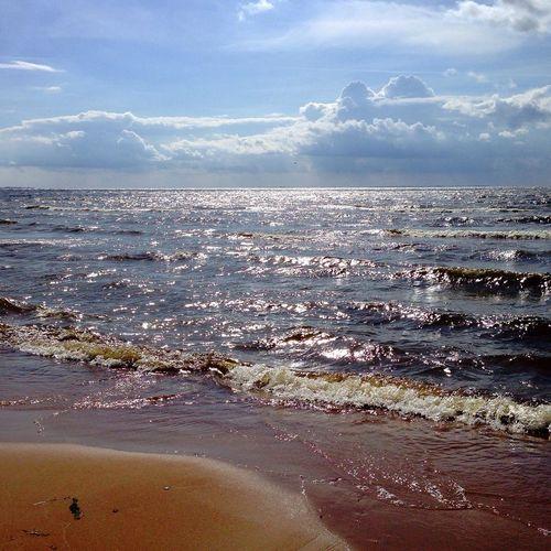 Seashore Finlandbay