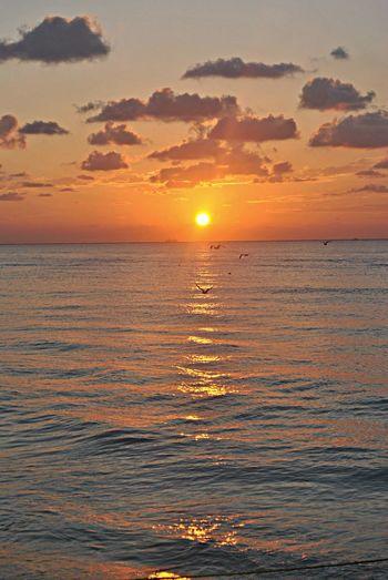 The Five Senses sun peace sea