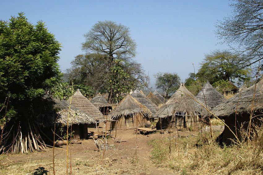 Ibel & Iwol traditional villages Senegal Traditional Culture African Village Architecture Bassari Bassari Country Day House Iwol No People Outdoors Scenics Senegal Thatched Roof Traditional Tranquility Tree Village