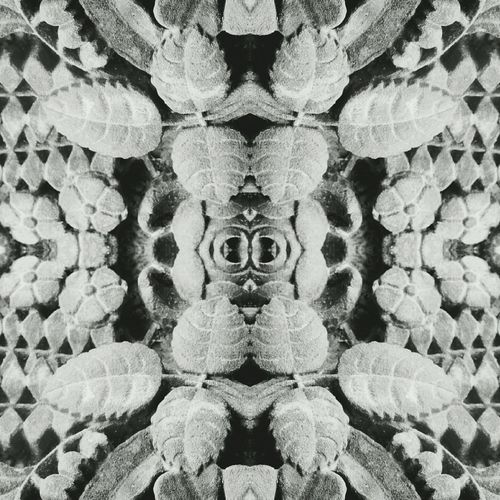 Stone Stones Stone Carving Carved In Stone Flowers Flora Floral Showcase April Nature Reflection Mirrored Pattern Pieces Pattern Monochrome Black And White Black & White Symetry Mirrored Image The KIOMI Collection Leaves Reflections Art Symmetry Fractals Fractal