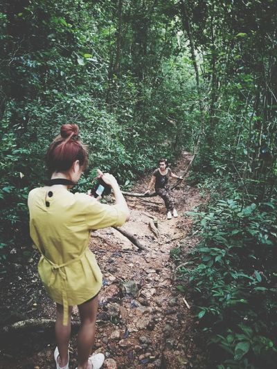Rear View Of Woman Photographing In Forest
