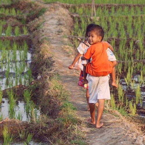 Belajar akan sebuah Ketulusan Disawah Kampungku Desa Anakpetani anakindonesia petani child children brother keluargapetani instagram