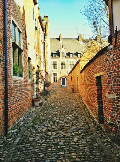 Leuven Flanders Belgium Beguinage Begijnhof Street Streetphotography Peaceful