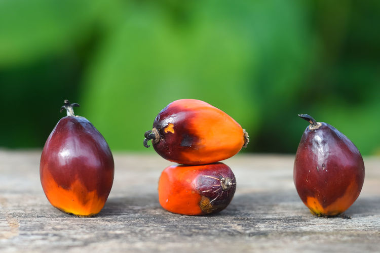 Palm oil seed Food Food And Drink Freshness Healthy Eating Fruit Close-up Wellbeing Focus On Foreground No People Selective Focus Still Life Red Wood - Material Day Table Nature Vegetable Green Color Outdoors Group Of Objects