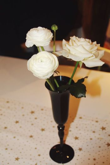 Flowers Taking Photos Eye4photography  Photography EyeEm Best Shots Beautiful Nature White White Flower Pure Peace Roses