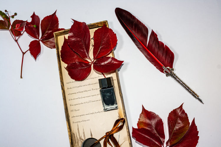 High angle view of red leaves on table