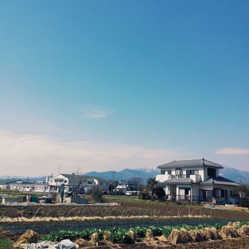 Had a great time here! And now it's time to go back to the city :( Farm Rural Scenes Field Japan