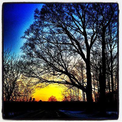 Pre-Leap Day Sunset #btv #vt Leapyear Sunset Landscape Tree Winter Silhouette Glow Vermont Vt Btv Vt_scenery Milton_vt Miltonvt Vt_scene Leapday
