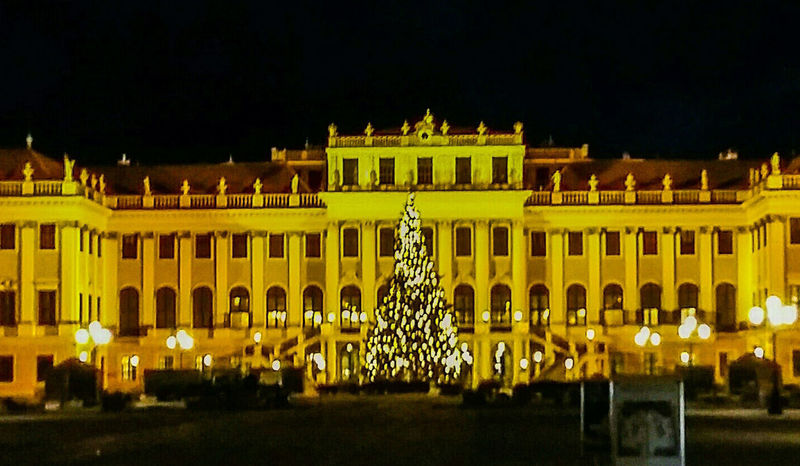 Travel Destinations History Travel Night Tourism Architecture Illuminated Outdoors Chrismastree Schloß Schönbrunn Sissi's Palace