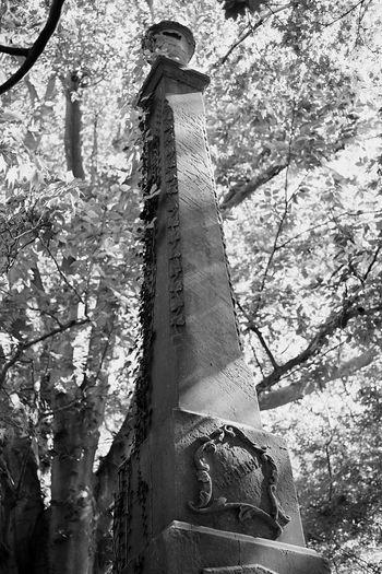 Matlack Family Of West Chester EyeEm Best Shots - Black + White Fujifilm Xpro1 The Street Photographer - 2015 EyeEm Awards TheCreatorClass Fujifilm_xseries Graveyard Collection Old Graveyard Graveyard Beauty