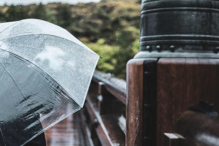 Umbrella and