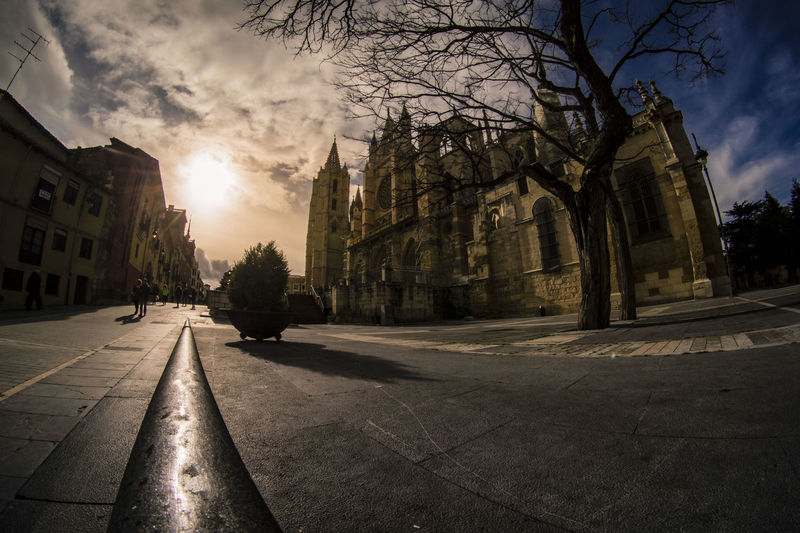 The other side Cathedral Light Perspective City Tree Cityscape Sky Architecture Cloud - Sky Fish-eye Lens Urban Skyline