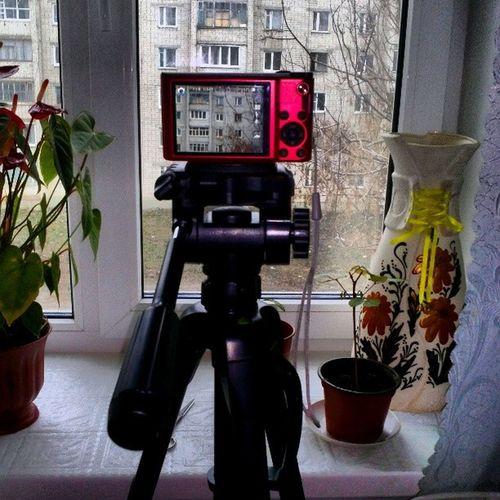 фотоаппарат штатив трипод Tripod photo instagram