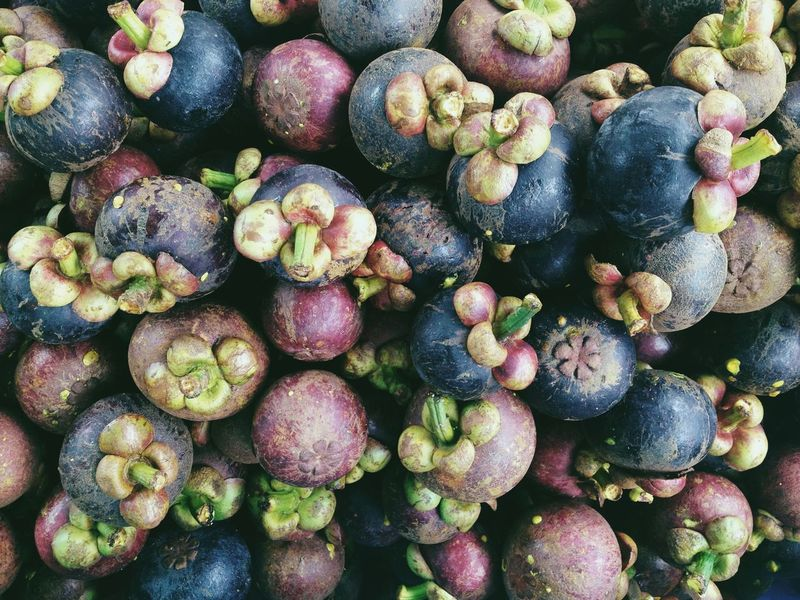 Mangosteen Fruit background. Market Abundance Backgrounds Close-up Day Food Food And Drink Freshness Fruit Full Frame Green Color Healthy Eating Large Group Of Objects Mangosteen Mangosteen Fruit Mangosteens Nature No People Outdoors Vegetable
