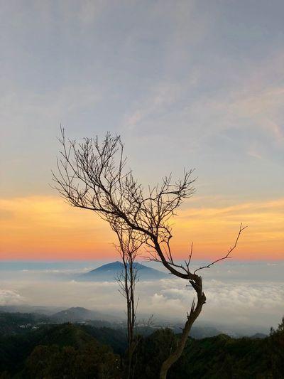 Sunrise in Mt.