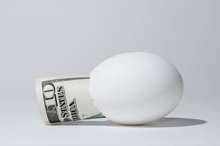Dollar and an egg Bill Broken Egg Business Business Finance And Industry Close-up Currency Day Dollar Egg Finance Financial Financial Planning Global Finance Inside Of Money No People Paper Rolling Save Savings Studio Shot White Background White Color