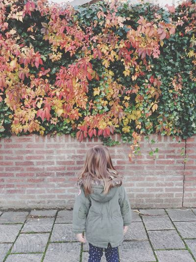 Full length of woman standing on footpath during autumn