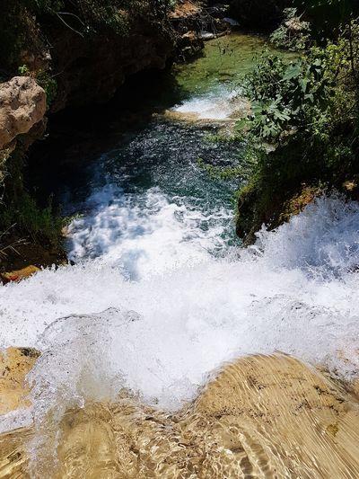 Nature Serenity