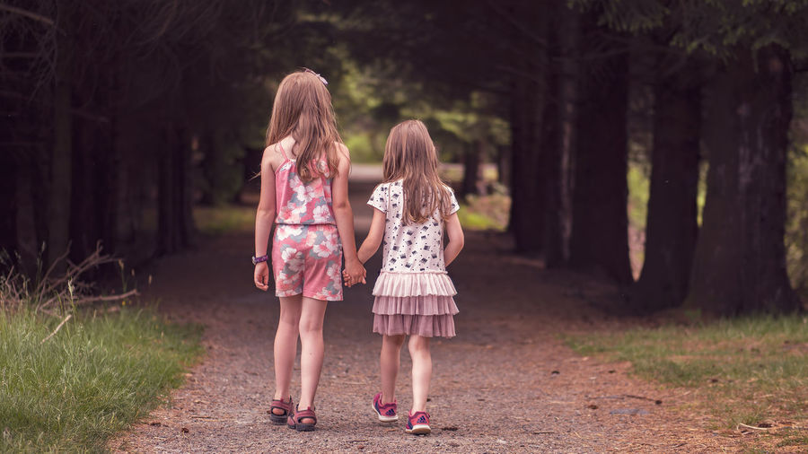 Sisterly love Children Dresses Loving OM-D E-M10 Mark II Walk Bonding Childhood Family Girls Hair Innocence Long Hair Offspring Outdoors Rear View Sister Sisterly Love Togetherness Tree Two People Walking