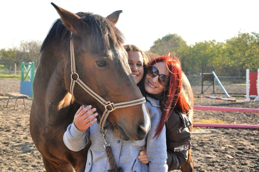 🇨❤ Helloworld My Horse And My Mum Love My Horse Love My Mum I Love Animals Holsteiner Horse Clinton Tb Photoshoot