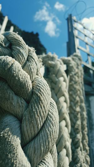 Close-up of rope tied to harbor